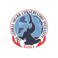 The Global Shark Conservation Initiative