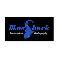 BlueShark Conservation