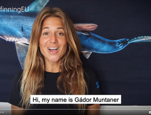 Gador Muntaner explains why to sign #StopFinningEU